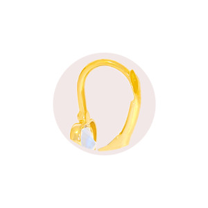 Paar 585er Gold Klappbrisur Ohrringe Blume Ohrhänger Kinder Mädchen Damen Etui 2